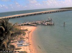 Webcam desde Miami, Florida