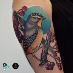 Tatuagem em Neo Tradicional criada por Neto Lobo. Pássaro. #tattoo #tatuagem #art #arte #neotraditional #neotradicional #colorida