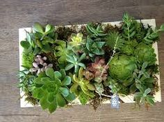 Idea for Decorating with Artificial succulents