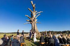 A golden sunset, stunning ceremony by a big old tree and a marquee reception in the countryside. Most would say this was the perfect Willow Farm wedding! Outdoor Ceremony, Wedding Ceremony, Wedding Venues, Willows Farm, Farm Wedding, Countryside, Berry, Dolores Park, Concert