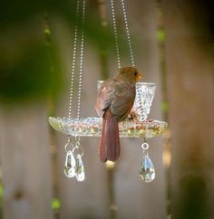 Pretty Yard Art and Garden ideas. These recycled teacup and crystal homemade bird feeders are beautiful! Garden Spheres, Glass Garden, Witch's Garden, Diy Hanging, Hanging Planters, Garden Crafts, Garden Projects, Garden Ideas, Art Crafts