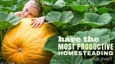 100+ Ways to Make Money Farming You'll Wish You'd Known Sooner! - The Free Range Life