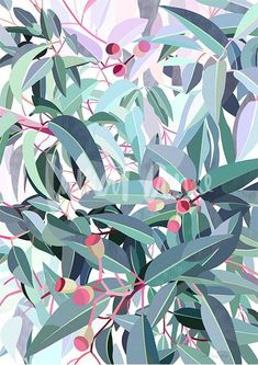 Discover Australian artist Lamai Anne's beautiful Native Grace range. Modern and contemporary art for you home interior. Bring the Australian outdoors inside! Australian Native Flowers, Australian Artists, Tree Wall Art, Painted Leaves, Botanical Art, Photoshop, Illustration Art, Illustrations, Botanical Illustration
