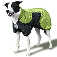 D-fa Puff Doggy Thinsulate Super-insulating Coat