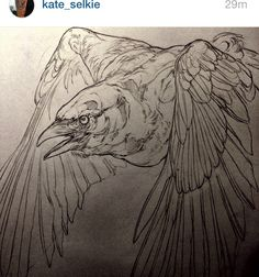 Kate selkie  #tattoo #ink #tats #tatouage #draw #illustration #bw #blackworker #girl