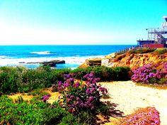 Take me back...La Jolla Beach, San Diego