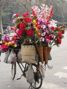 Happy Valentines Day ❤️ Delivering flowers in Paris. Photo from French Wench on facebook.