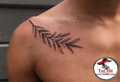 Olive branch tattoo designs with meaning and its symbolism. Also you find Small and traditional olive branch tattoos on ear, shoulder and finger. Realistic Flower Tattoo, Small Flower Tattoos, Flower Tattoo Arm, Flower Tattoo Shoulder, Flower Tattoo Designs, Olive Tattoo, Olive Branch Tattoo, Small Chest Tattoos, Small Tattoos For Guys