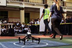 """<p>23/01/2016/NP / LD Como una experiencia """"muy interesante, divertida y a la vez instructiva"""", profesores y alumnos del Colegio La Salle de Caracas (La Honda) catalogaron la actividad que marcó el inicio del Proyecto Auladron, concebido por Maxdrone Venezuela como…</p>"""
