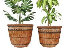 LARGE Tortoise Bamboo Plant Basket Pot. Boho Woven Planter
