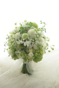 All green bouquet Beautiful Bouquet Of Flowers, Green Flowers, Love Flowers, White Flowers, Natural Bouquet, Bridal Flowers, Flower Bouquet Wedding, Hand Bouquet, Floral Bouquets