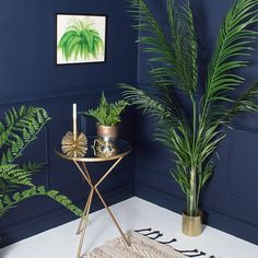 With the trend for indoor plants, and green being the number 1 colour choice this season this lush fern framed print is perfect as a statement piece, or as part of a wall montage.