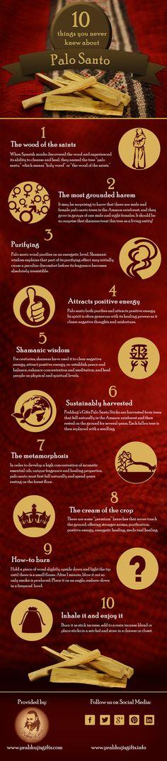 Palo Santo Infographic