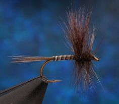 Early Gray quill bodied Catskill dry fly