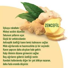 Muhteşem The miracle of ginger - Sağlık Health Tips, Health And Wellness, Health Fitness, Alternative Health, Alternative Medicine, Healthy Beauty, Health And Beauty, No Gluten Diet, Healthy Drinks