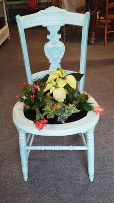 Penelope the Coastal Cottage Christmas planter chair