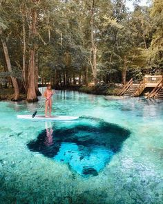 Dreamy waters of Ginnie Springs, one of Florida's natural gems. Dreamy waters of Ginnie Springs, one of Florida's natural gems. Dreamy waters of Ginnie Springs, one of Flori's natural gems . Vacation Places, Dream Vacations, Vacation Spots, Vacation Trips, Vacation Ideas, Florida Travel, Travel Usa, Florida Vacation, Florida Usa