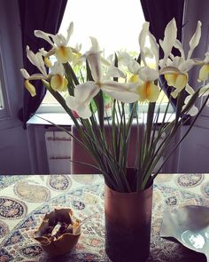 Jess has some gorgeous birthday flowers on the dining table daffodil orchid hybrid? Maybe?