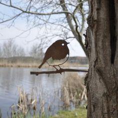 roodborst metalbird vogelsilhouet - kopie (800x531)