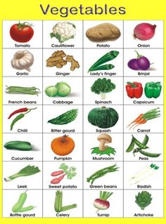 Name of vegetables with pictures Vegetables Names With Pictures, Name Of Vegetables, Vegetable Pictures, Different Fruits And Vegetables, Vegetables List, Vegetable Chart, Vegetable Salad, Fruits Name In English, Sweet Potato Green Beans