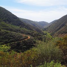 Solstice Canyon Trail in Malibu, CA // A Must-See in LA // http://thenestednomad.com