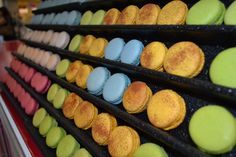 Nesta ocasião foram escolhidos e produzidos sabores exclusivamente com Frutas Capixabas: Abacaxi, Café, Chocolate (Cacau), Coco Verde e Banana com Canela.