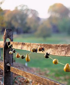pear garland events wedding rustic parties autumn fall