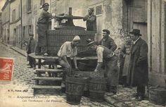 Vendanges - Le pressoir-argenteuil09