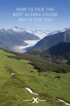 Alaska Cruise Routes: How to Pick the Best Cruise Route Cruise Destinations, Celebrity Cruises, Best Cruise, Alaska Cruise, Pointers, Bald Eagle, Mother Nature, Wilderness, The Best