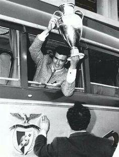 José Águas com a Taça de Campeão Europeu Football Love, School Football, Judo, Benfica Wallpaper, Good Soccer Players, Sports Clubs, Uefa Champions League, Eagles, Old School