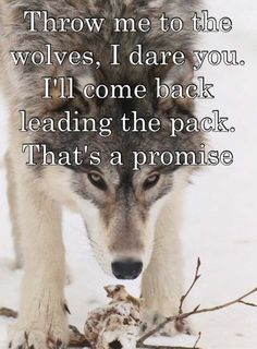 Throw me to the wolves, I dare you. I'll come back leading the pack, that's a promise!