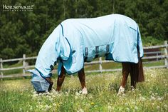 Horseware Collection S/S16: Rambo Sweet Itch Hoody Vamoose. Visit www.horseware.com to find your nearest stockist.