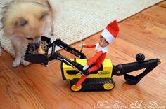Elf on the Shelf ideas - Feeding the dog....
