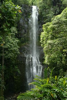 Waterfall in Hawaii.