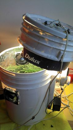 Space Buckets are easy to build at home, and will allow you to grow small amounts of marijuana in a way that's low budget, simple, and doesn't need a lot of room. Unlike other, more expensive grow methods, a starter Space Bucket only costs about $100 to make.