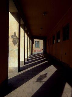 Beyond light. Kyra. MUNK Matustik photo