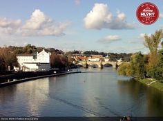restaurace-terasa - Medan, Prague, Pictures