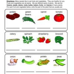 plant parts we eat worksheet worksheets plants and seasons kindergarten. Black Bedroom Furniture Sets. Home Design Ideas