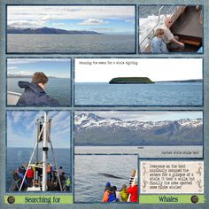 Iceland Whale Watching Cruise - Scrapbook.com