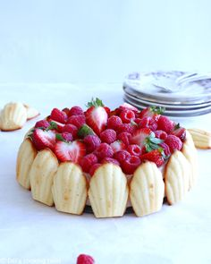 Madeleine Strawberry Charlotte - Let's revisit a French classic and bring a little twist to it, using madeleines instead of lady fingers to this traditional strawberry charlotte cake! Desserts Français, French Desserts, Madeleine Recipe, Madeleine Cake, Rodjendanske Torte, Charlotte Cake, Cake Recipes, Dessert Recipes, Tofu Recipes