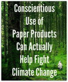 Conscientious Use of Paper Products Can Actually Help Fight Climate Change