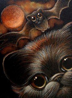 BLACK PERSIAN CAT with black Persian bat?