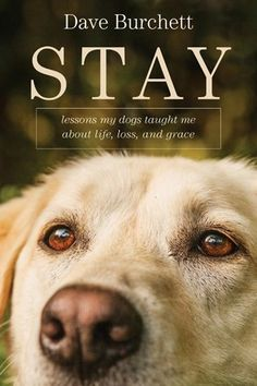 Stay: Lessons My Dogs Taught Me about Life, Loss, and Grace by Dave Burchett