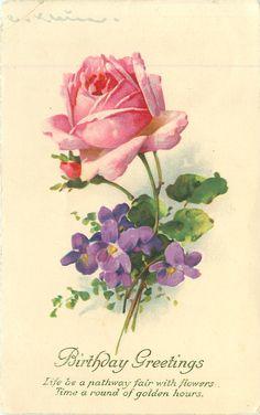 BIRTHDAY GREETINGS pink rose & violets