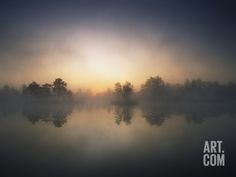 Morning Mist and Sunrise along Wetlands Photographic Print by Hans Strand at Art.com
