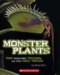 """Monster Plants"" looks at all kinds of weird plants: carnivorous plants, parasitic plants, mycoparasites, sensitive plants, and plants that mimic the teeth-rattling stench of dead animals. Distributed by Scholastic, only kids can buy it, via Scholastic Book Press."