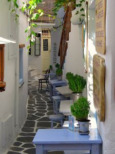TAVERNA , Myconos Island, Greece...lovely!!