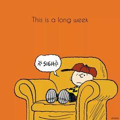 You said it Charlie Brown!!!                                                                                                                                                                                 More