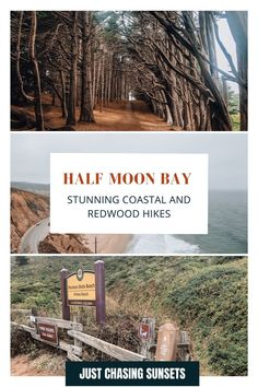 Take a day trip from San Francisco to Half Moon Bay for some great hiking! There are beautiful hiking trails in. Half Moon Bay California for every fitness level, each offering awesome ocean views or a hike through Redwood groves! Check out this post for all of the hiking details! California Travel Guide, California Destinations, Beautiful Places To Visit, Cool Places To Visit, Cypress Tree Tunnel, Half Moon Bay California, Travel For A Year, Moss Beach, Redwood Forest