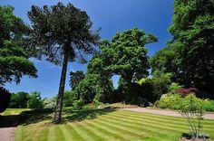 Hodnet Hall Gardens - Flip van den Elshout - Picasa Webalbums